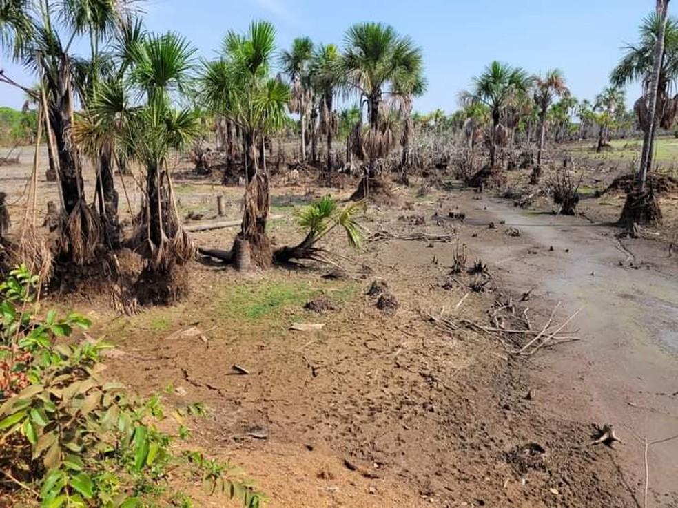 Região de 7 Lagoas, em Alto Paraguai, Mato Grosso — Foto: Reprodução