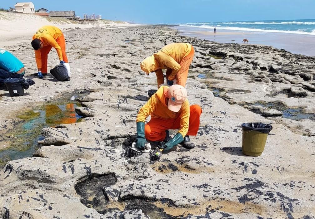 Praia da Sabiaguaba recebe mutirão de limpeza para retirada de manchas de óleo que vazou no litoral nordestino — Foto: José Leomar/SVM