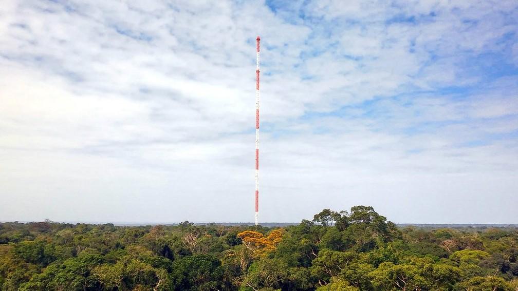 The Amazon Tall Tower (ATTO), torre de mediação atmosférica em Manaus utilizada pelos cientistas do projeto GoAmazon — Foto: Jorge Saturno