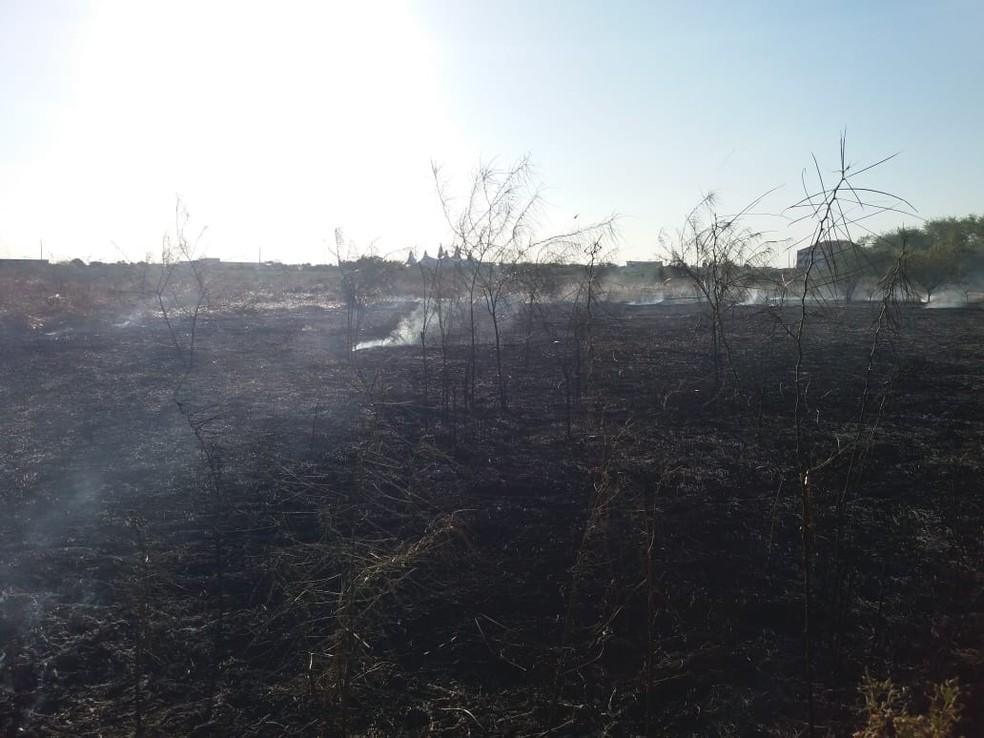 Fogo atinge vegetação em área de proteção ambiental de Iguatu, no Ceará — Foto: Wandenberg Belém