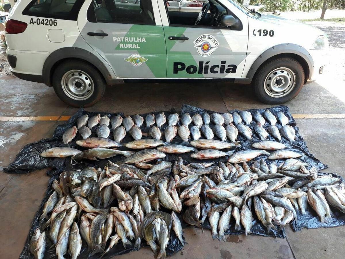 Polícia apreende mais de 100 quilos de pescado irregular em Votuporanga