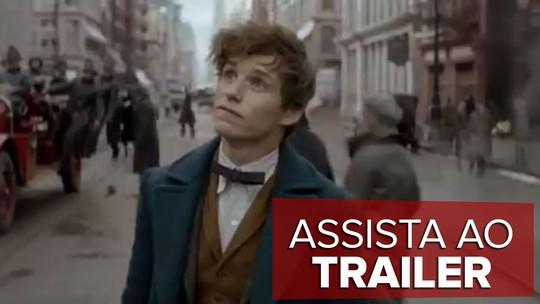 'Animais fantásticos e onde habitam', spin-off de 'Harry Potter', estreia na PB
