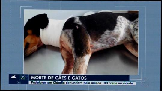 Animais são envenenados, esfaqueados e atropelados em Cláudio