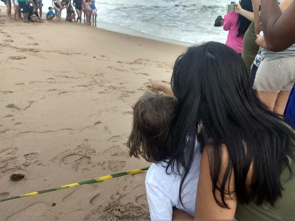 Muita gente acompanhou soltura de 77 filhotes de tartarugas marinhas na praia do Mirante da Sereia, em Maceió — Foto: Derek Gustavo/G1