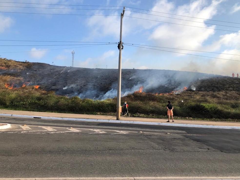 Incêndio destrói parte da vegetação na Avenida Litorânea, em São Luís. — Foto: Divulgação.