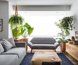 Apartamento dúplex tem cara de sobrado e é repleto de plantas
