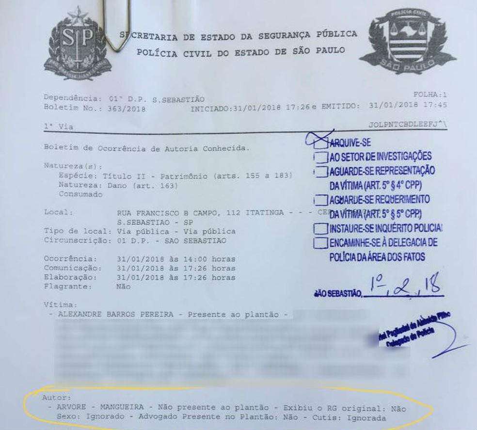Árvore é apontada como autora de crime em boletim de ocorrência em S. Sebastião (Foto: Reprodução)