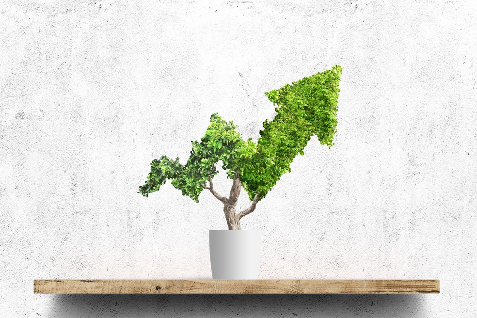 Investimento responsável — Foto: GettyImage