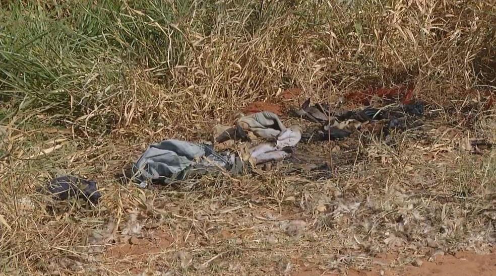 Corpo da jovem foi achado parcialmente carbonizado na zona rural de Assis (Foto: TV TEM/Reprodução)