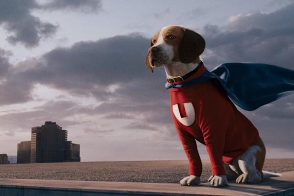O herói canino de O Vira-Lata (2007) (Foto: Reprodução)