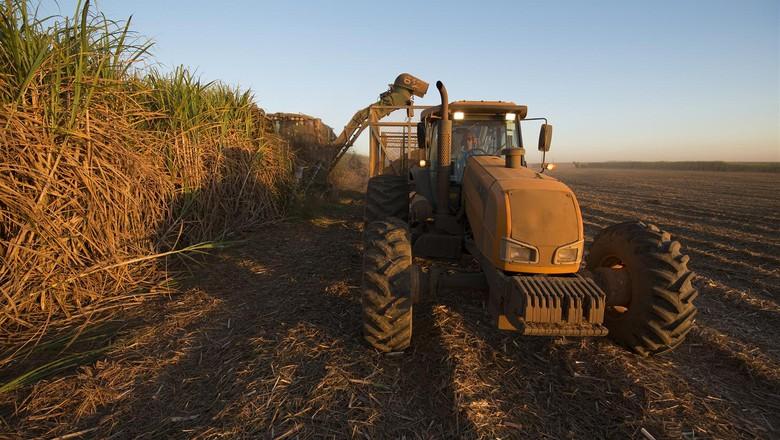 colheita-cana-de-açúcar (Foto: Raizen/Divulgação)