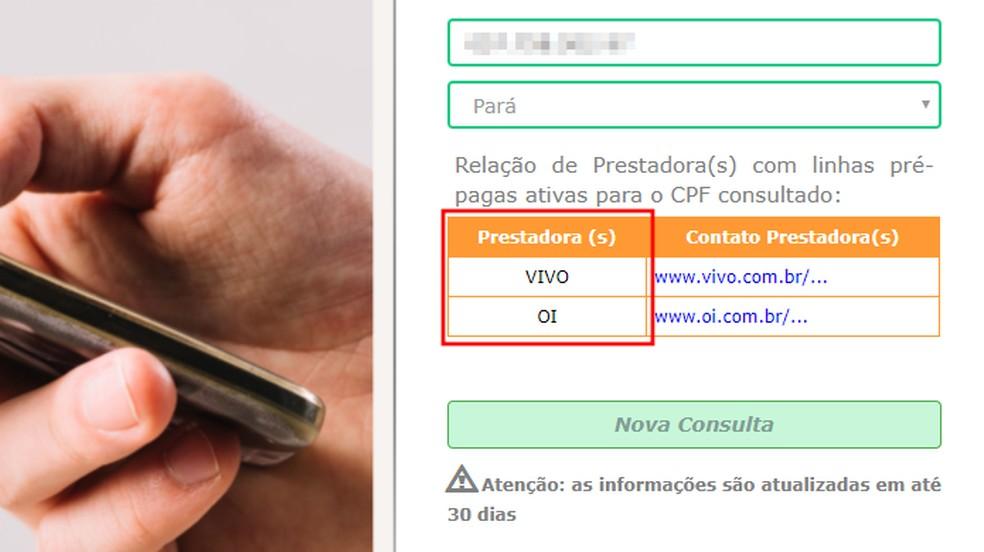 Portal Consulta Pré informa apenas quais operadoras têm uma ou mais linhas no CPF informado — Foto: Reprodução/Paulo Alves