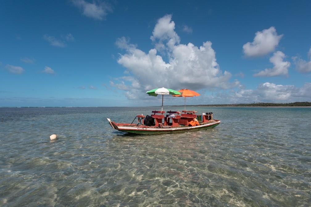 Passeio de jangada nas piscinas naturais da Praia do Toque, em São Miguel dos Milagres — Foto: Marcelo Brandt/G1