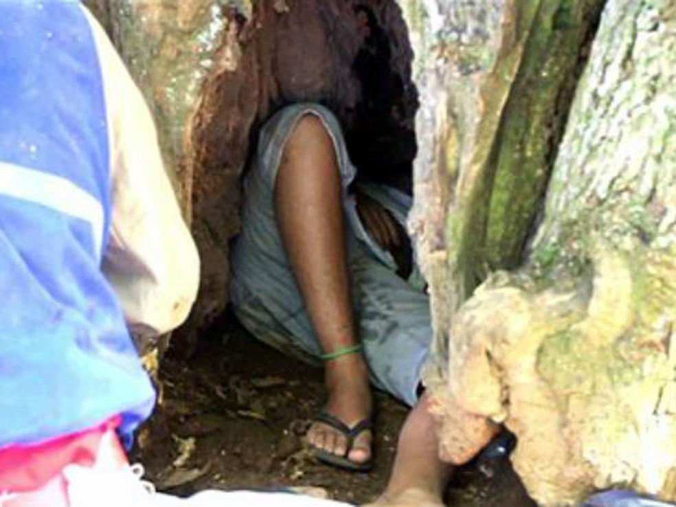 Segundo o Corpo de Bombeiros, adolescente de 12 anos ficou preso na árvore por quase duas horas (Foto: Fabio Matavelli/Diário dos Campos)