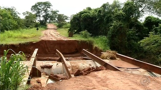 Temporal causa alagamentos, quedas de árvores e interdições em cidades do noroeste paulista