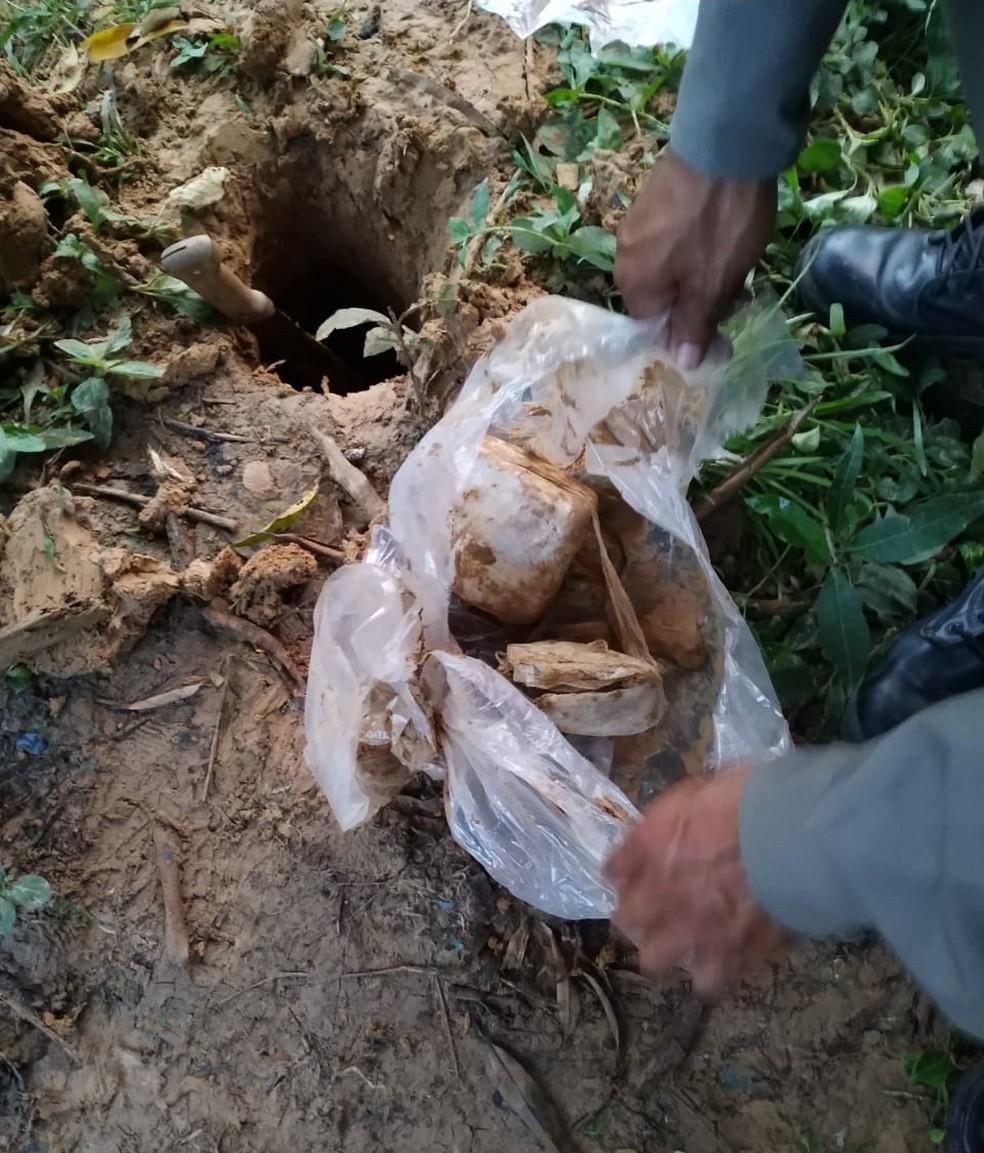 Maconha foi achada em quintal dos avós de suspeitos  — Foto: Divulgação/PM de Sena Madureira