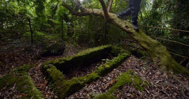 Imagem de sítio arqueológico com caixões feitos com pedra calcária, encravado na floresta tropical. (Foto: Ted Aljibe/AFP)
