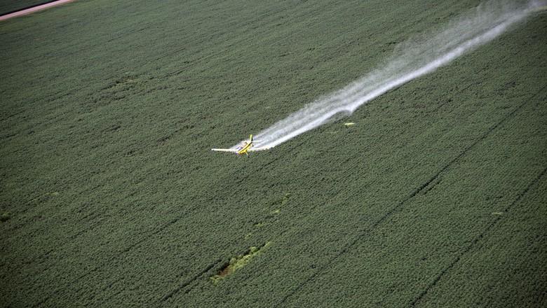 agricultura-aviacao-agricola (Foto: Emiliano Capozoli/Ed. Globo)