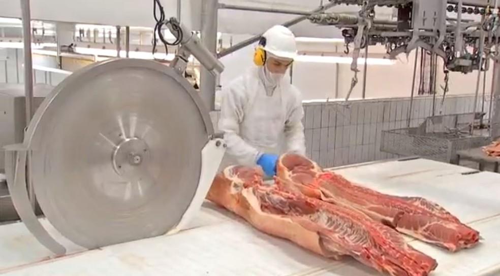 Acordo dá acesso à carne suína brasileira à União Europeia — Foto: Reprodução/TV Morena