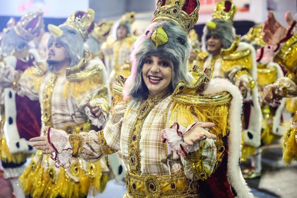 """Ala """"Majestade o sabiá"""" no desfile da Dragões da Real (Foto: Fábio Tito/G1)"""
