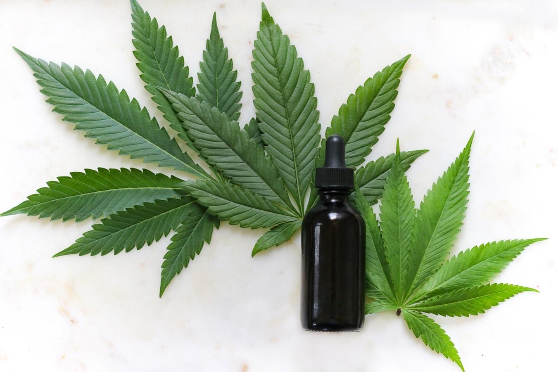 'Meus meninos são outros após a cannabis', diz mãe que obteve direito de cultivar planta para tratar filhos autistas em Campinas