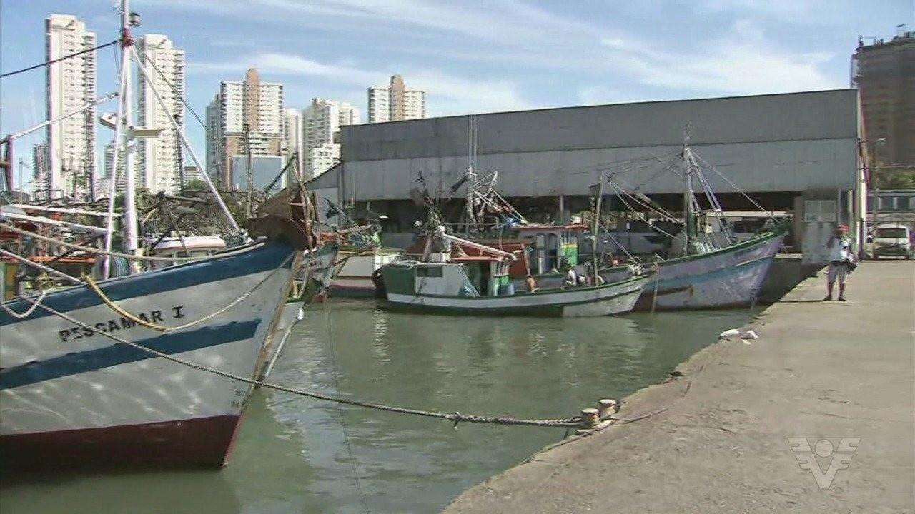Câmara de Santos cobra Ministério da Economia por transparência na privatização de Terminal Pesqueiro
