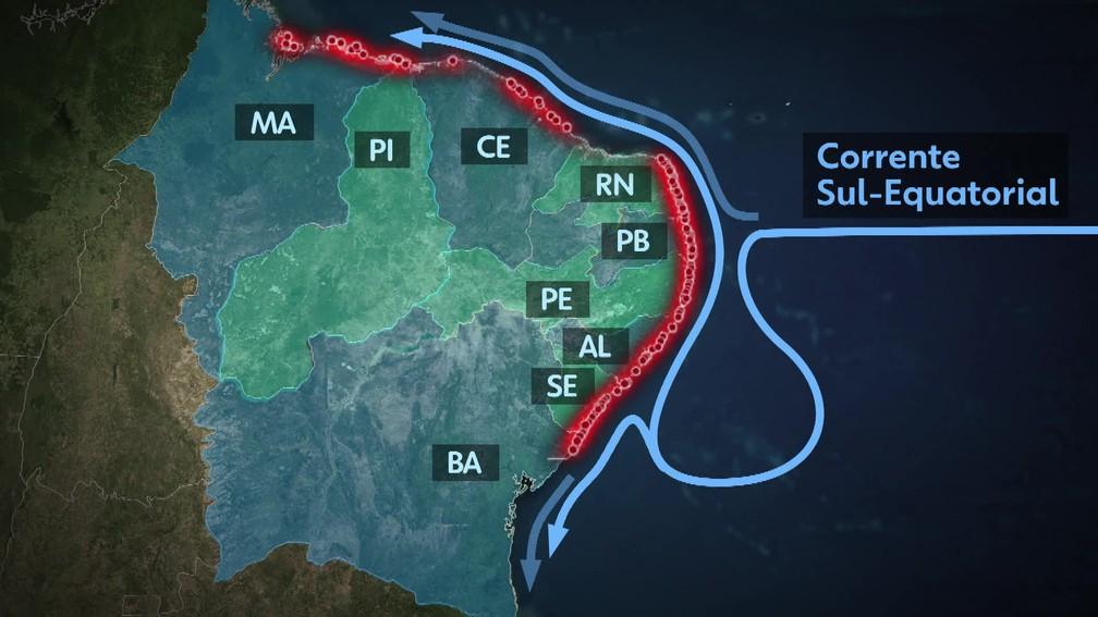 A Marinha criou um modelo para entender o deslocamento provável da mancha de petróleo — Foto: Reprodução/TV Globo