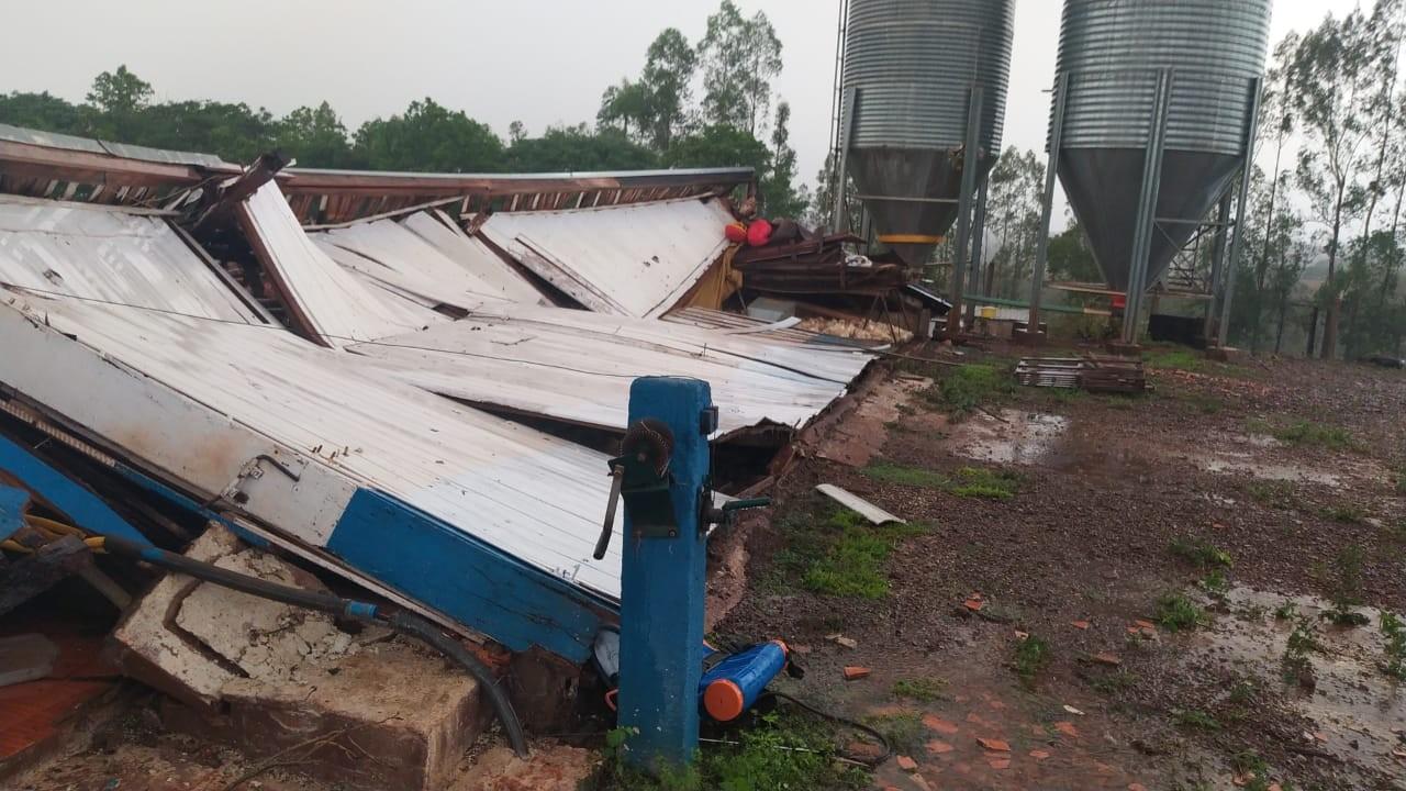 Temporal no Paraná: Aviário com 20 mil frangos desaba, em Assis Chateaubriand