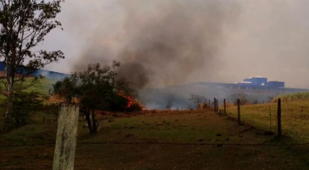 Fogo em área de Santa Gertrudes (Foto: Laura Tesseti/ Jornal A Cidade)