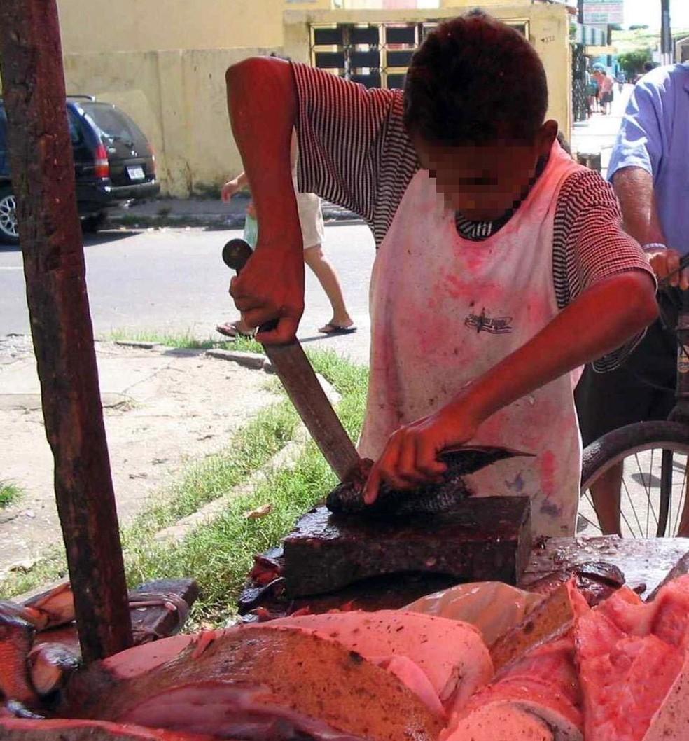 Crianças são flagradas em trabalho ilegal no Ceará — Foto: TV Verdes Mares/Reprodução