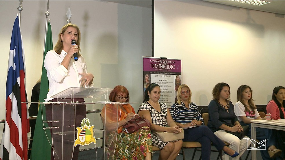 -  Audiência Pública foi realizada na Assembleia Legislativa do Maranhão.  Foto: Reprodução/TV Mirante