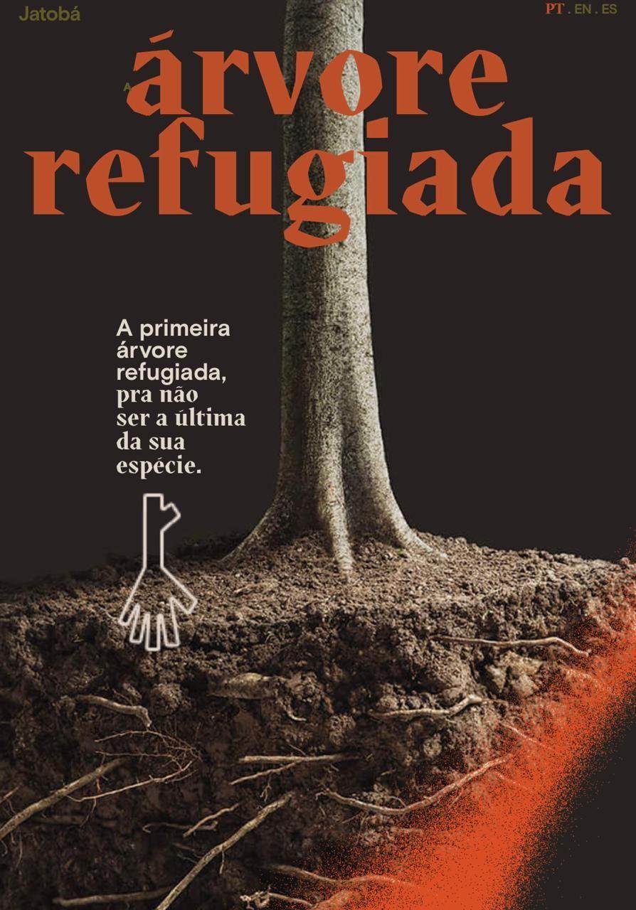 Ambientalistas e líderes brasileiros  entram no projeto Árvore Refugiada, para defender a Amazônia