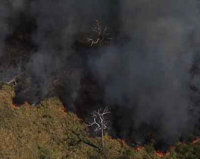 """Por que o governo brasileiro está sendo processado por """"pedalada climática"""""""