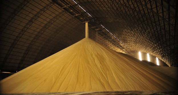 Mercado de açúcar vive incertezas com pandemia e subsídios da Índia
