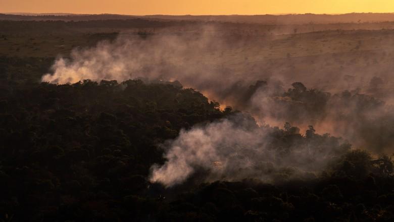 queimada-mt-greenpeace (Foto: Christian Braga/Greenpeace)