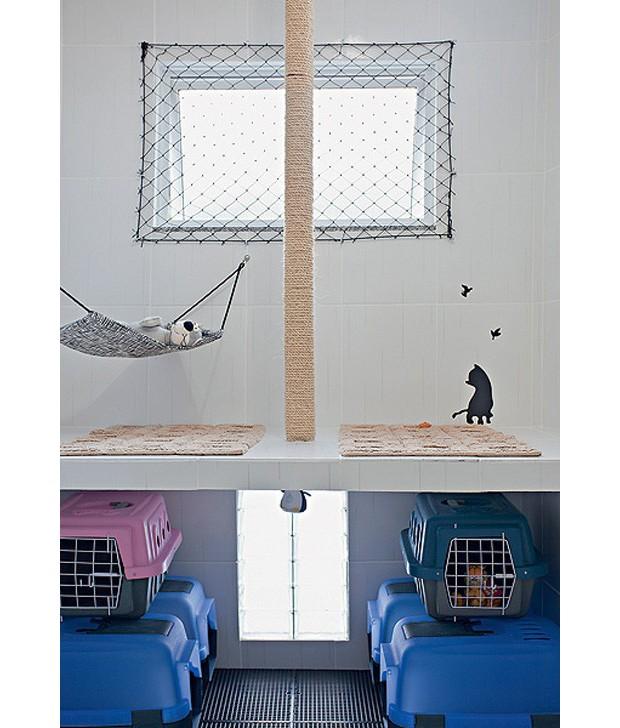 """Sob a pequena laje, caixas higiênicas (as azuis) são os """"banheiros"""". Dentro delas, há areia. Tijolos vazados foram estrategicamente colocados nessa área, para minimizar o odor. A bancada serve para dar banho e limpar as orelhas dos gatos. (Foto: Ilana Bar/Editora Globo)"""