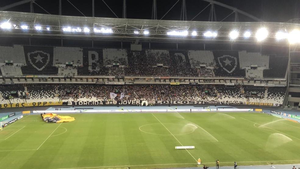 Nilton Santos, durante jogo entre Botafogo e Paraná, foi o palco do caso — Foto: Thayuan Leiras/GloboEsporte.com