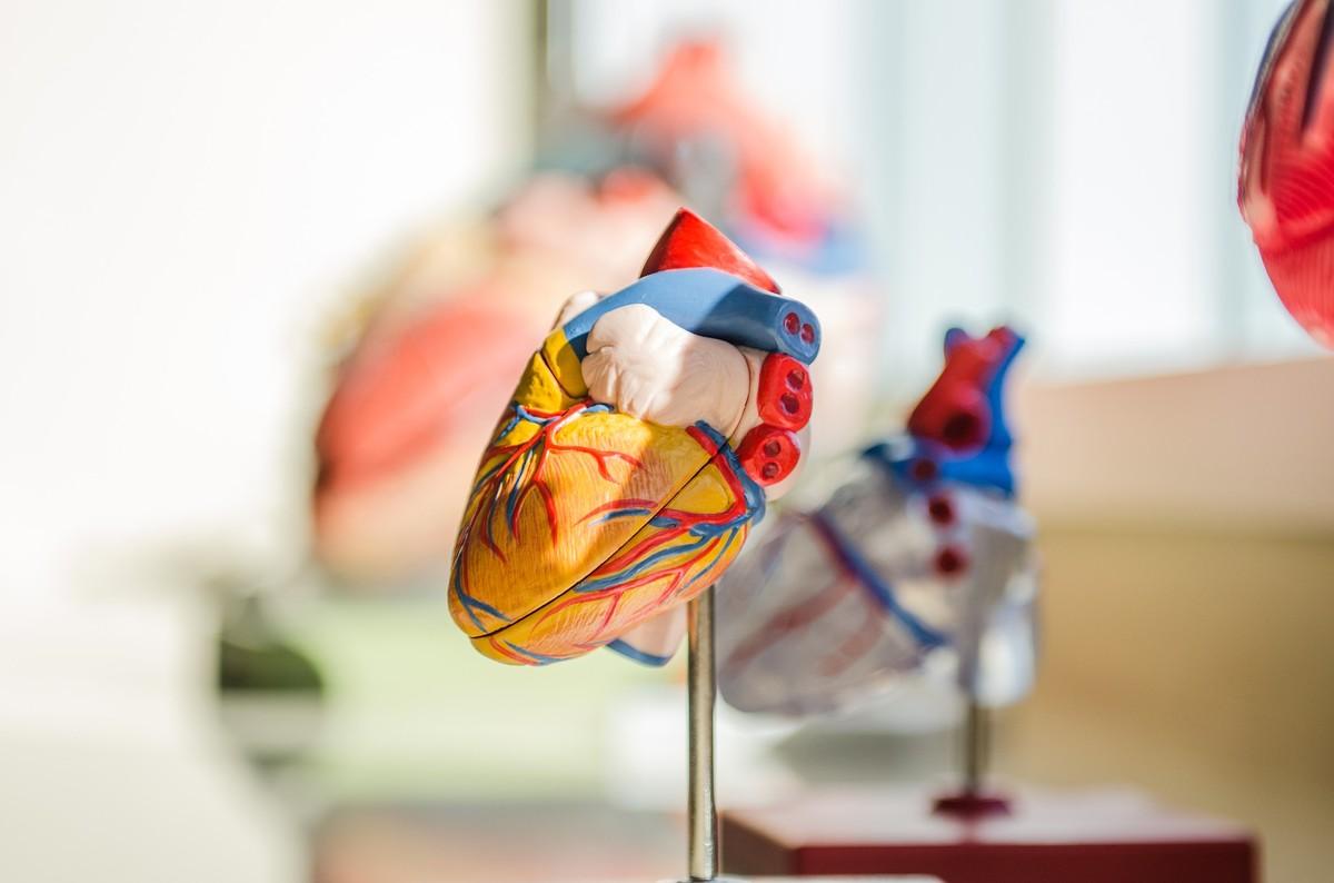 Batimento cardíaco irregular pode aumentar risco de demência, diz estudo