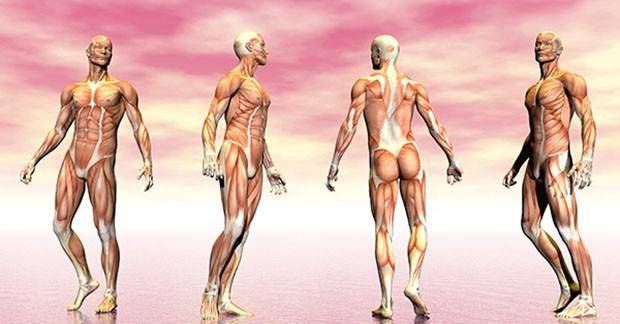 Cientistas identificam três casos de miastenia, doença neuromuscular, em pacientes com Covid-19
