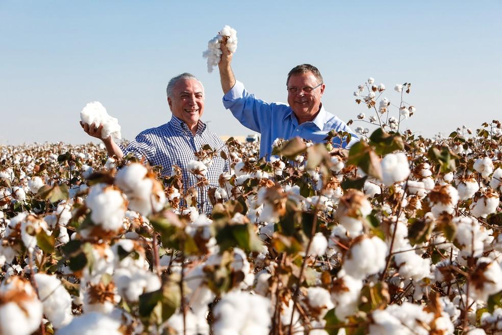 Presidente Michel Temer e ministro Blairo Maggi durante a abertura da colheita do algodão em Lucas do Rio Verde (Foto: Alan Santos/PR)