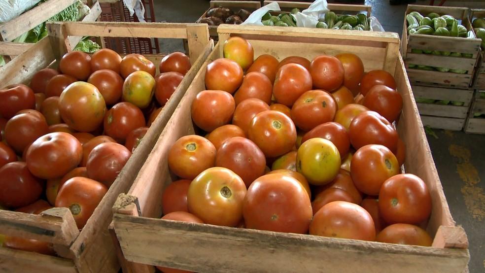 Tomate foi o item da cesta básica com maior queda de preço — Foto: Reprodução/TV Gazeta