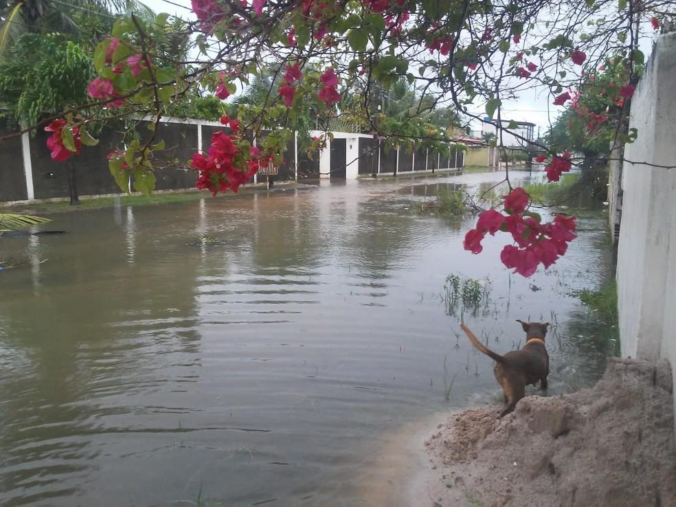 Segundo moradora da Rua Britânia, água da chuva está prestes a invadir residências em Paulista — Foto: Reprodução/WhatsApp