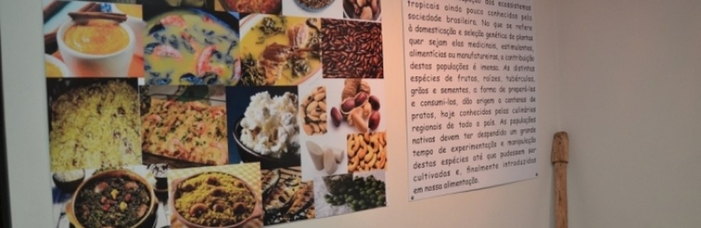 Museu do índio da UFU é aberto à visitação durante a semana em Uberlândia (Foto: UFU/Divulgação)