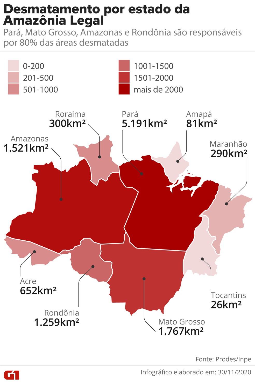 Desmatamento na Amazônia entre 2019/2020 por estados. — Foto: Fernanda Garrafiel/Arte G1