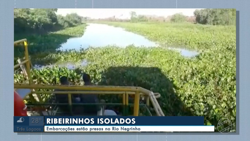 Ribeirinhos isolados em rio Negrinho são resgatados de helicóptero no pantanal. — Foto: TV Morena/Reprodução