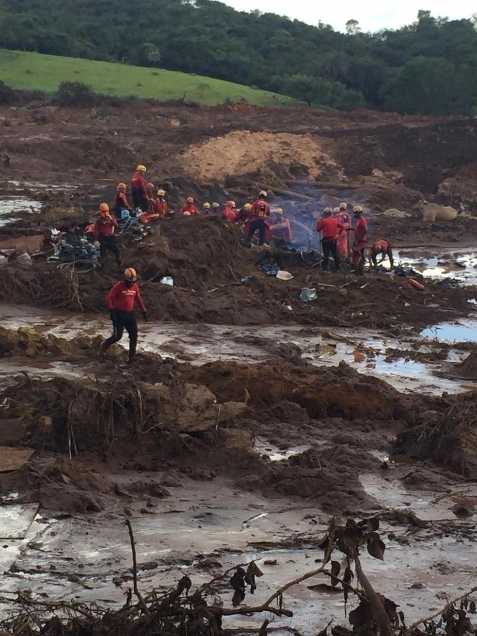 Bombeiros resgatam corpos em ônibus encontrado na lama em Brumadinho (MG) — Foto: Viviane Possato/TV Globo Minas