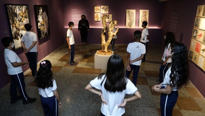 Exposições em cartaz no Espaço Cultural Unifor atraem visitantes de todas as idades