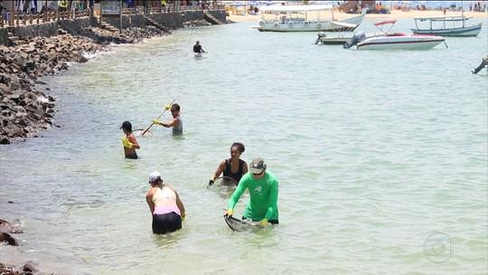 Mutirão limpa praias de Morro de São Paulo, um dos principais pontos turísticos da Bahia