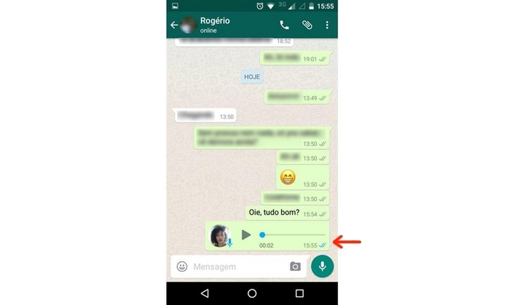 Áudio do WhatsApp mostra sempre check azul — Foto: Reprodução/Raquel Freire