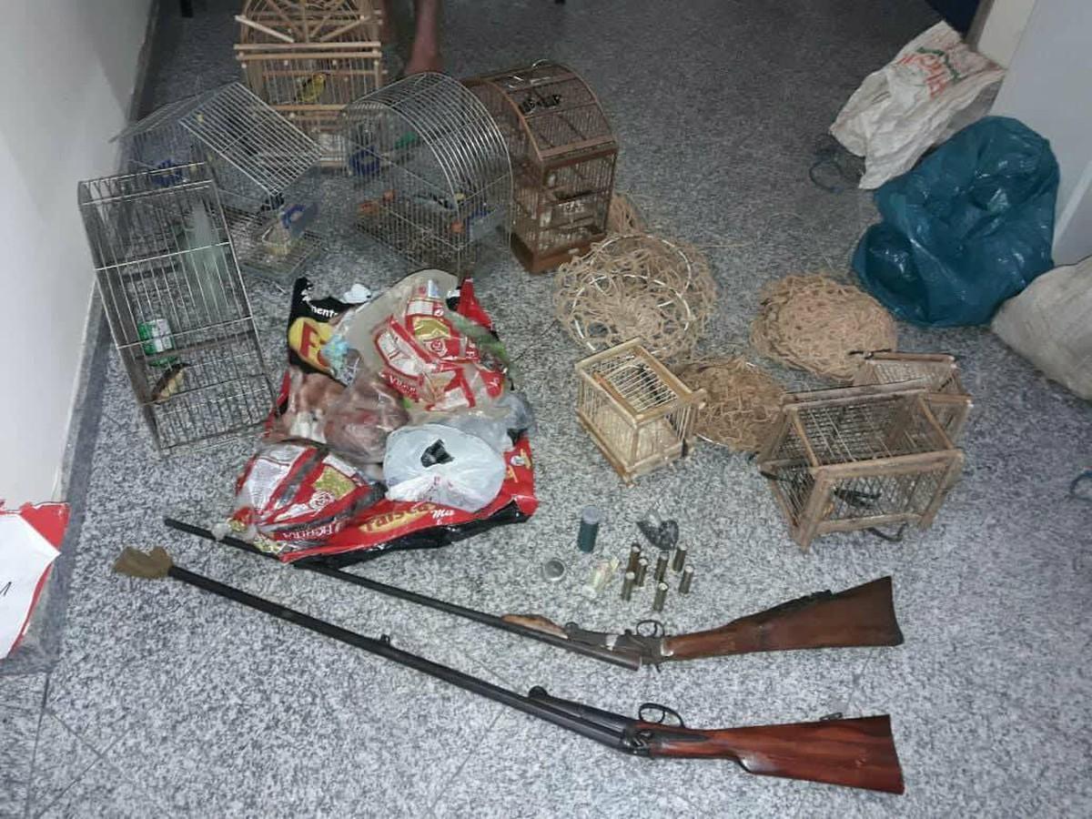 Polícia Ambiental resgata pássaros silvestres em São Fidélis, no RJ